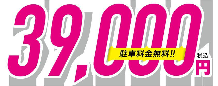 成人全日票(含停車費!)39,000日元(含稅)