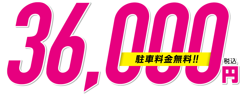 成人全日票(含停車費!)36,000日元(含稅)